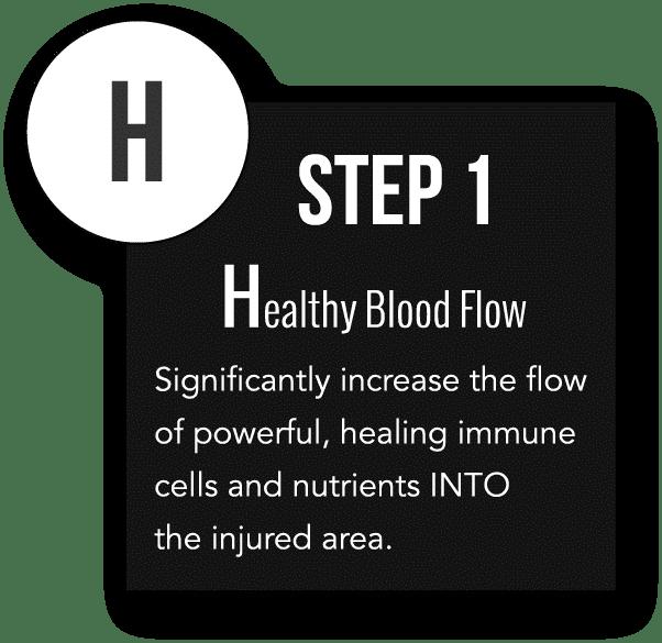 H Step 1 - Healthy Blod Flow